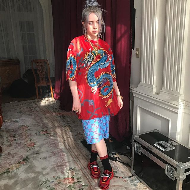 Billie Eilish Family In Detail Mother, Father And Older -5228