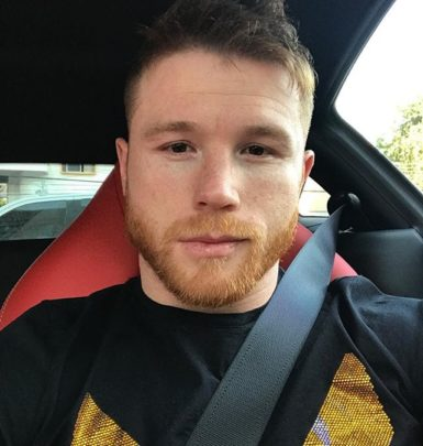 Canelo Alvarez biography