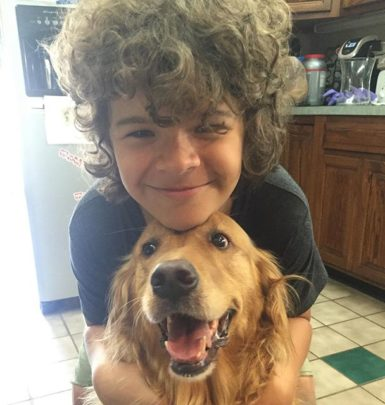Gaten Matarazzo biography