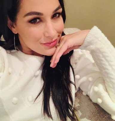 Brie Bella biography