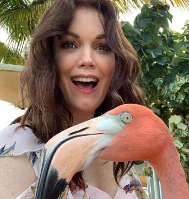 Bellamy Young biography
